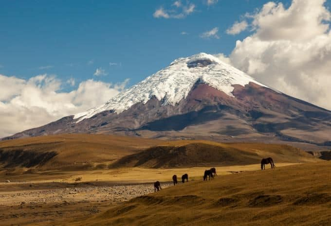 Cotopaxi-Nationalpark