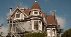 paintedladies-1