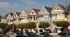 paintedladies-2