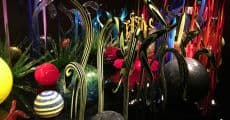 seattle chihuly-1