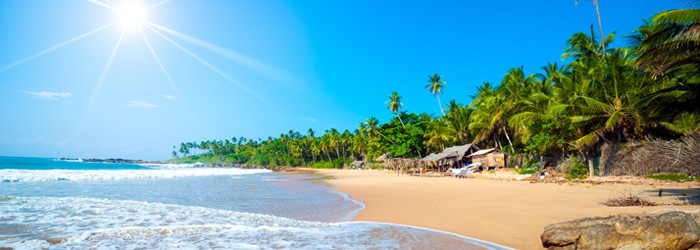 Sri Lanka: 9 Tage im 3,5*Hotel inkl. Halbpension und Flug mit Qatar Airways im März ab 1112€