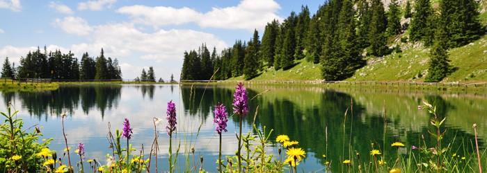 Aktiv- & Wellnessurlaub in Tirol: 2 – 7 Nächte im Top 4* Hotel inkl. Verwöhnpension, Wellness und anderen Extras ab 119€ p.P.