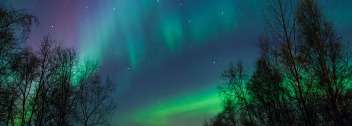 Lappland Reisebericht – Urlaubshamster on Tour
