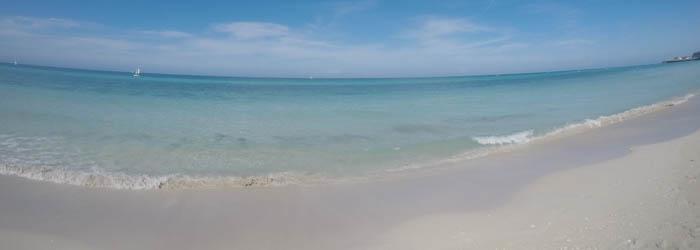 Florida Reisebericht – Urlaubshamster on Tour