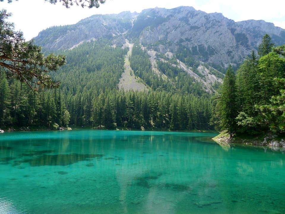 Grüner See Landschaft