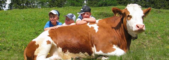 Urlaub am Bauernhof – Kärnten