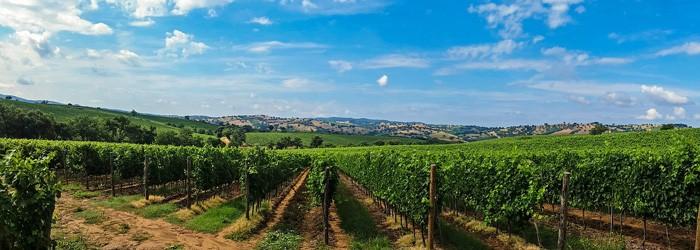 Toskana – Relais I Piastroni