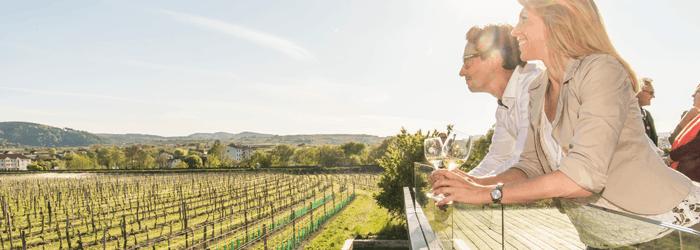 Weinverkostung Niederösterreich