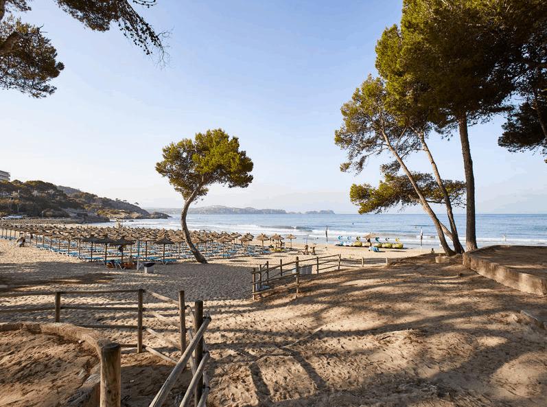 TUI Deals Mallorca