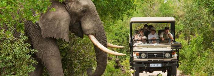 Kenia Safari & Strand