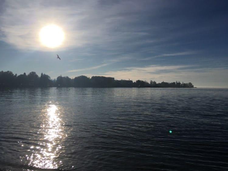 Seen in Österreich Bodensee