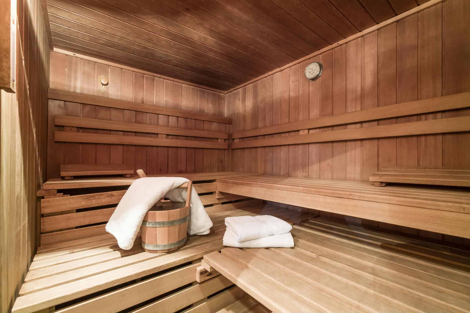 Hotel Alpina Sauna