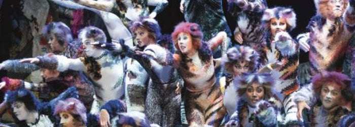CATS Musical Wien